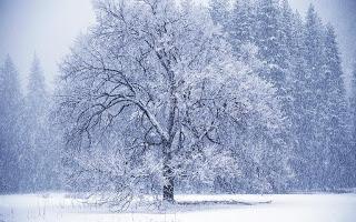 Lunta tulvillaan on raikas talvisää…