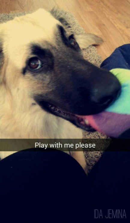 play-with-me-please