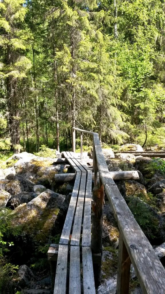 Hankalimmissa paikoissa oli pitkospuut.