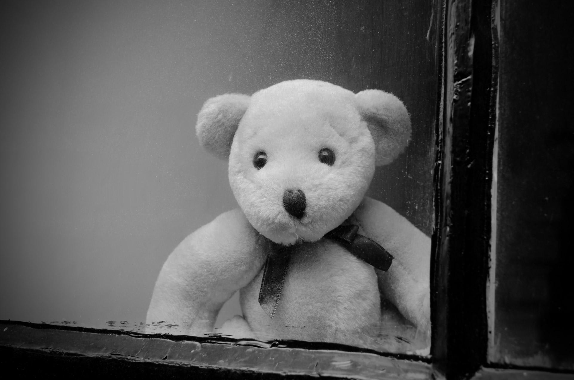 teddy-bear-behind-a-window.jpg