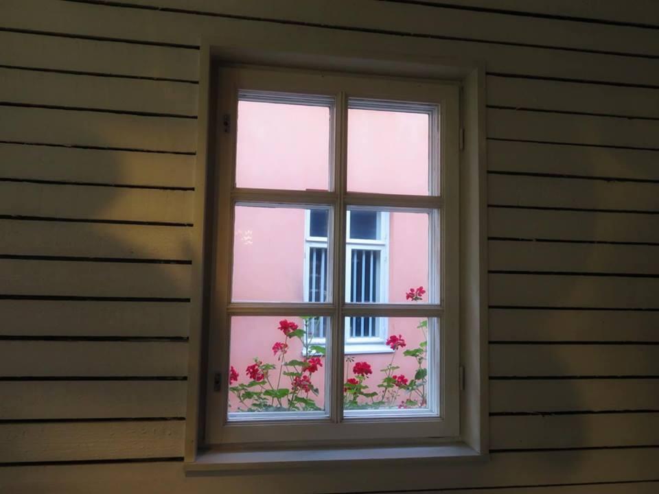 ikkunaruutu.jpg