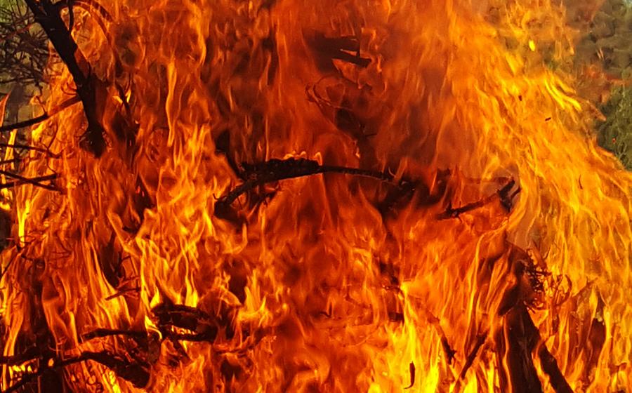 tulta.jpg