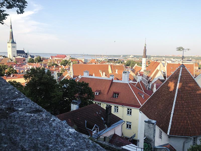 Kesäterkut Tallinnasta