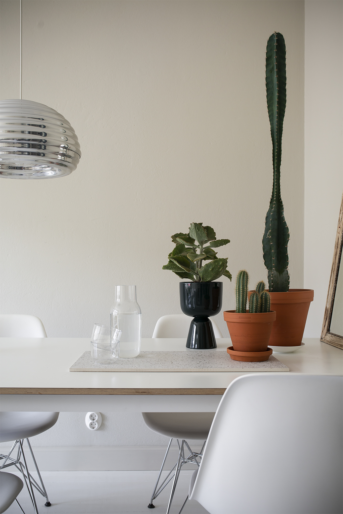 Kasvirykelmä ruokapöydällä