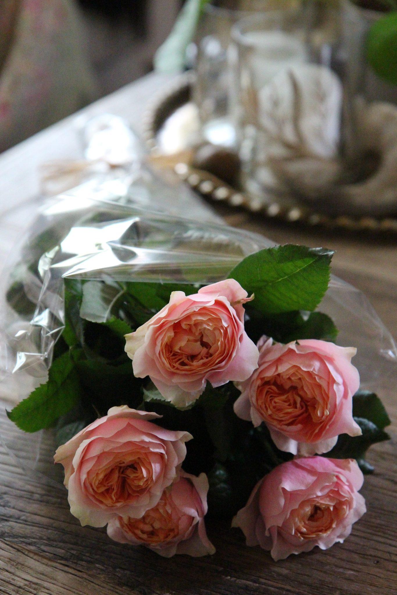Elämä ei ole pelkkää ruusuilla tanssimista