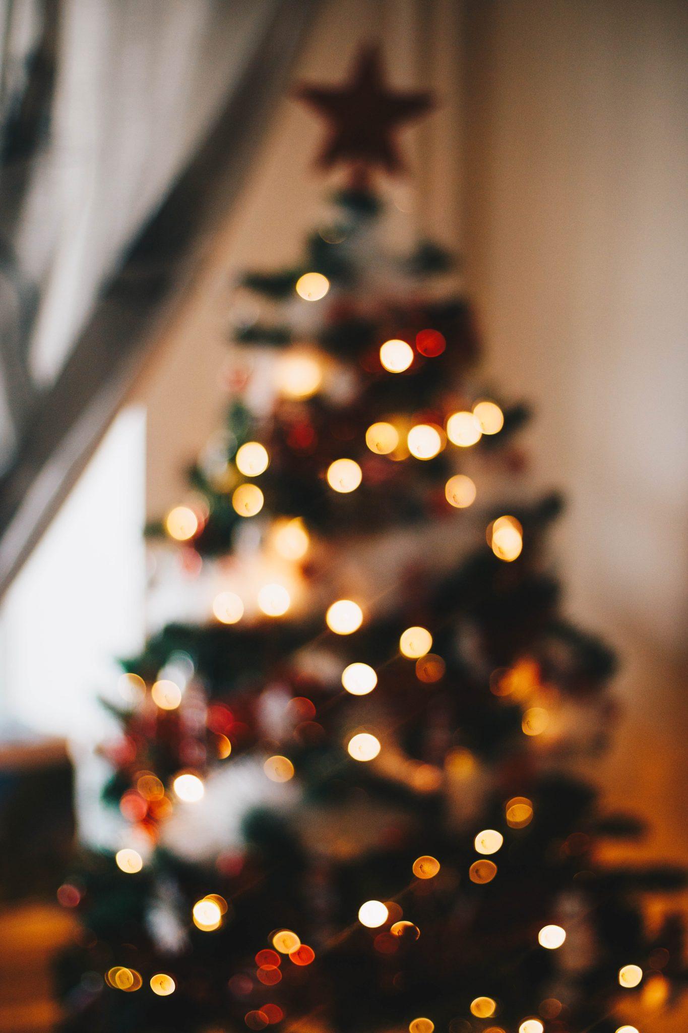 Rauhallista joulua – Joulukalenteri luukku 24