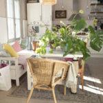 Kasvien uudet vaatteet ja kevätmessu-arvonta