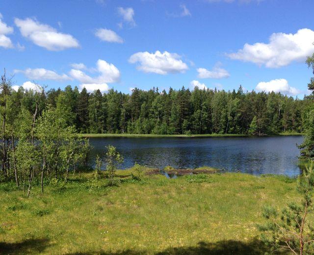 Nuuksion järvissä ja lammissa voi uida rauhassa