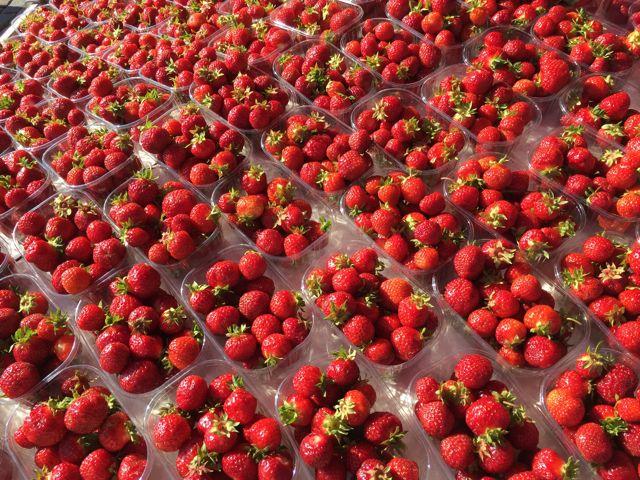 mansikat niin makeat!