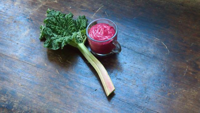 raparperitahna on huiken väristä, kun se värjätään elintarvikevärillä punaiseksi.