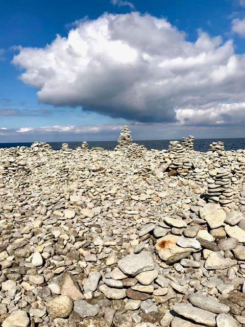 Meren hiomat kivet ovat täynnä fossiileja