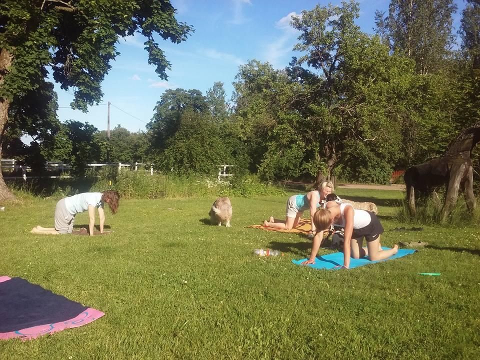 Ketterät naiset nurmella. Ynnä hundkarusellen. Kuva: Ope
