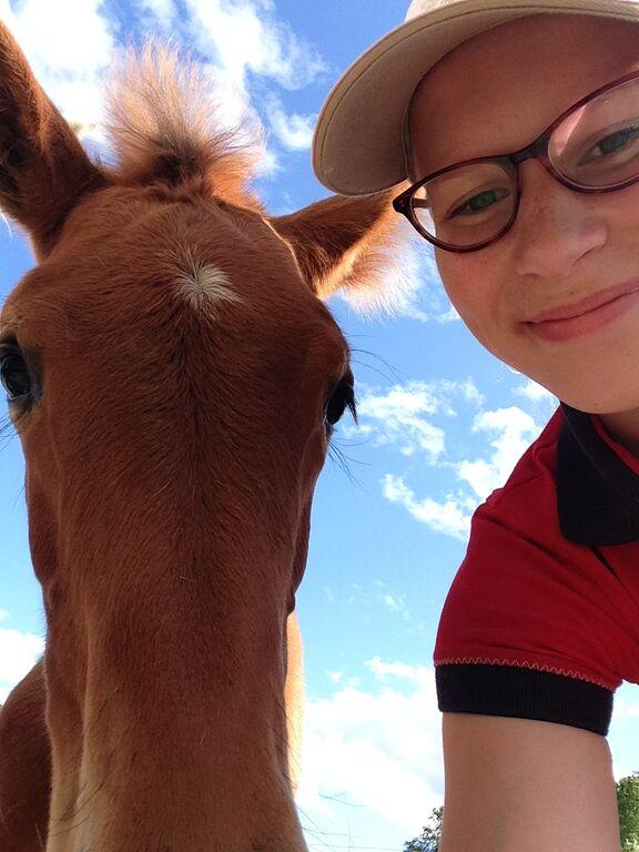 Hevonen on myös siitä kätevä, että sen kanssa voi ottaa selfieitä!