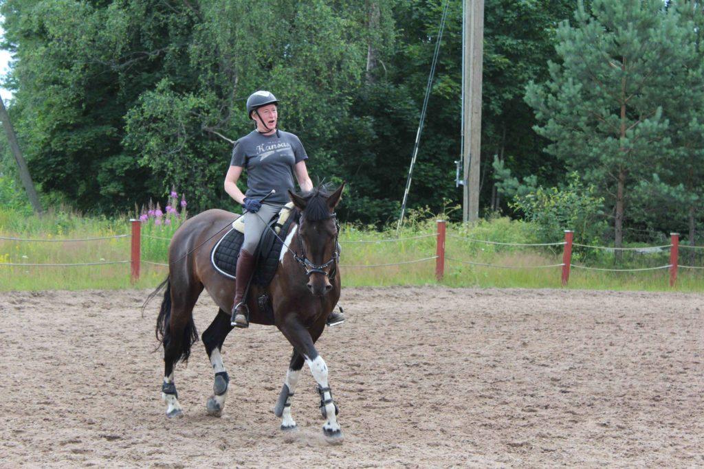 Onnistuminen on hevosesta/opettajasta/ratsastajasta/asenteesta/säästä/kyvyistä kiinni.
