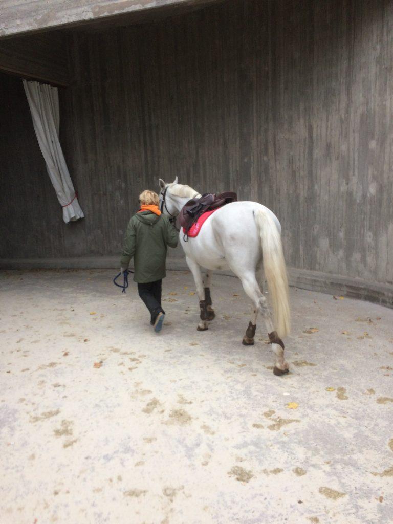 Äiti vie hevosta luolaan. Hevosta ihmetyttää.