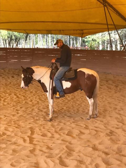 Kaksi komeata nuorikkoa, joista toinen on hevonen.