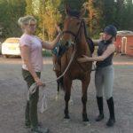 Kolme hevosta ja tytöt