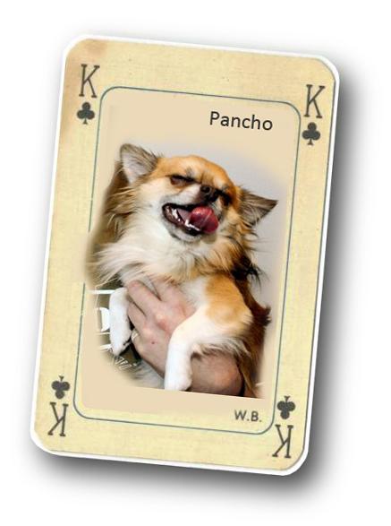 Kuukauden idoli: Kenraali Pancho