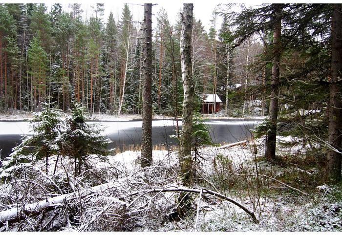 Metsää, joulun tuoksua ja puuroa
