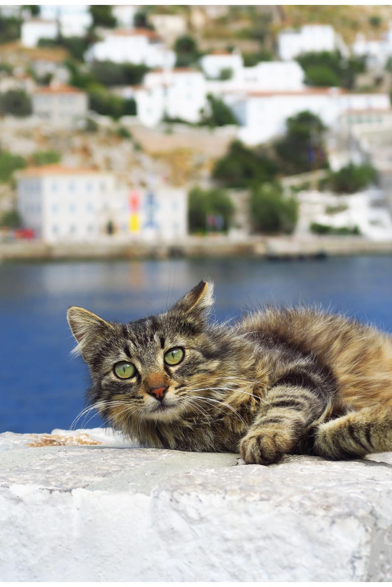 Huomioita Kreikan matkailusta