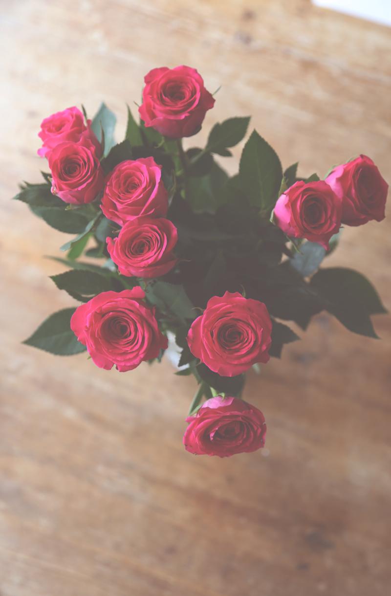 Rakkaudesta ja miten pitää kukat hengissä