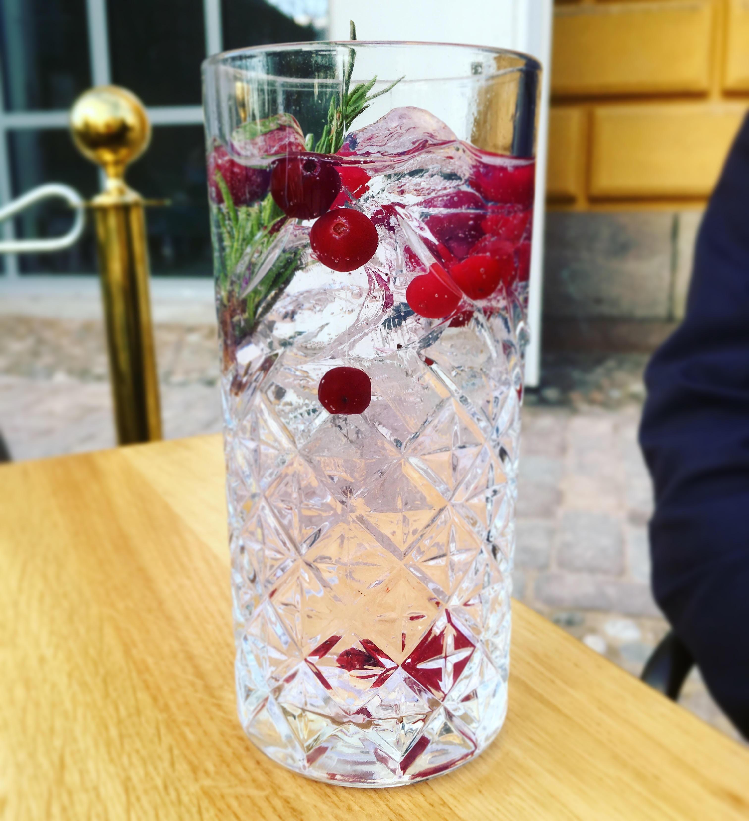 napue-gin-tonic