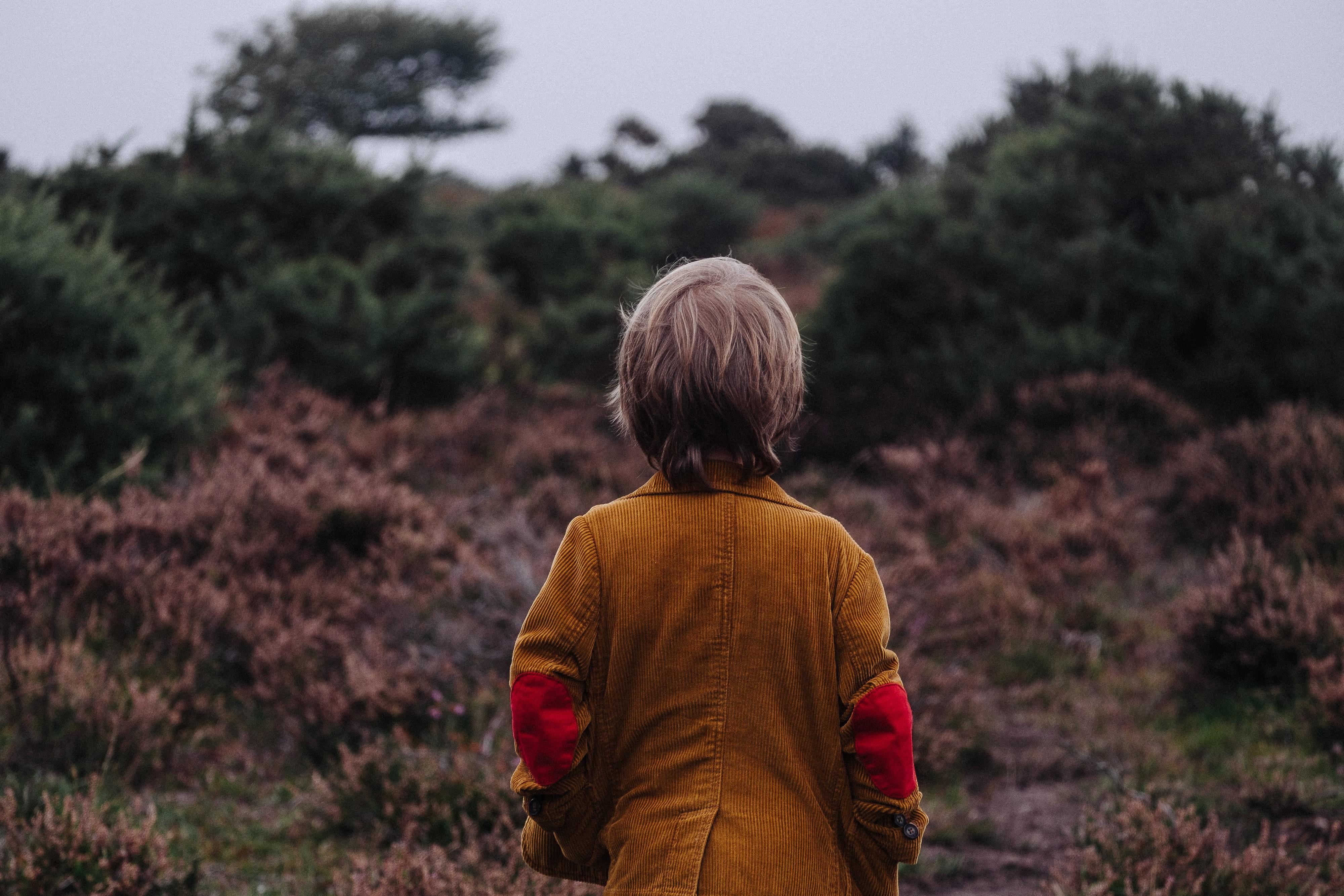 lapsuuden haitalliset kokemukset