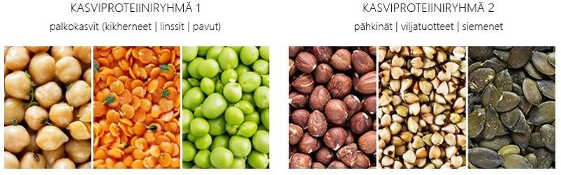 kasviproteiinin lähteet