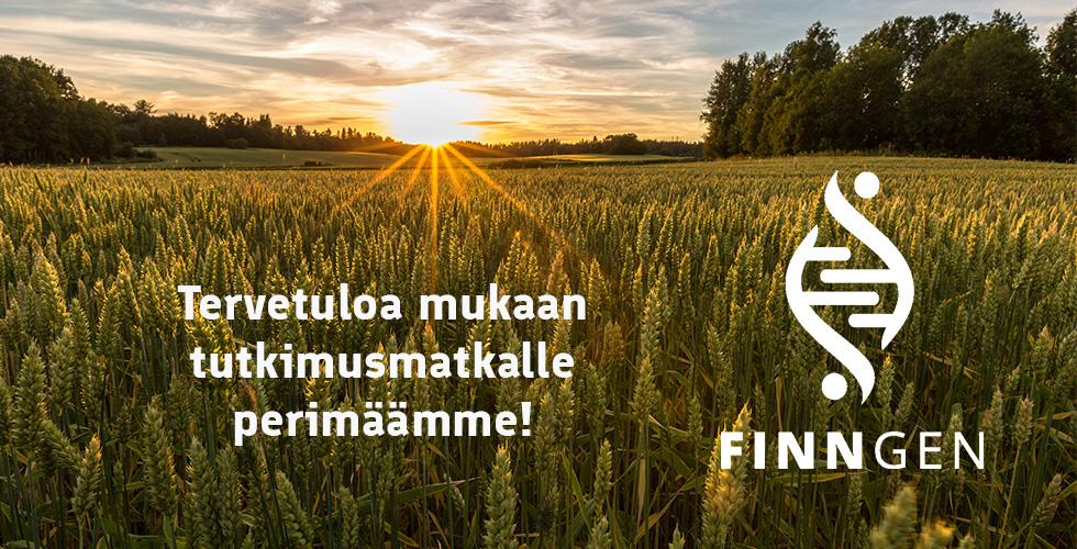 FinnGen – tutkimusmatka perimäämme