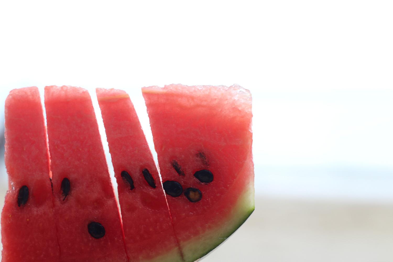 meloni-2
