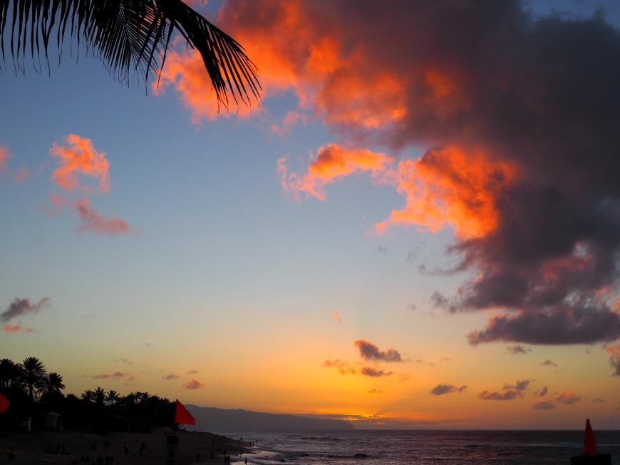Dolen ananastehtailla Havaijilla, Oahun pohjoisrannikolla