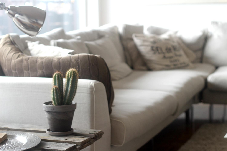 Uusi kaktuspöytä olohuoneeseen
