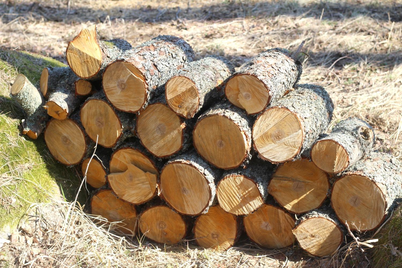 Puuklapit